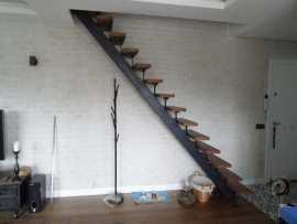 Profil Omurgalı Merdiven